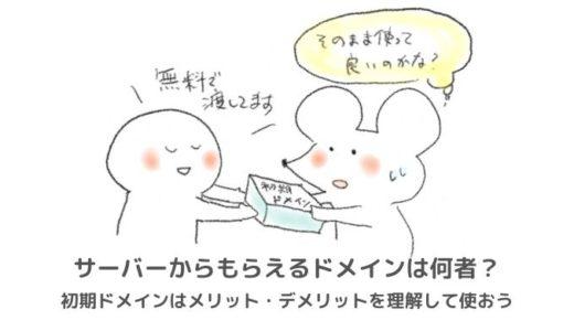 初期ドメイン(xsrv.jp)のリスクや独自ドメインとの違いは何?見分け方は?