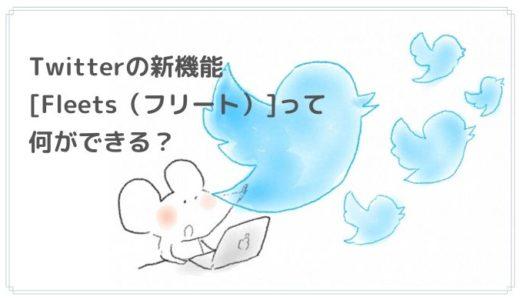 Fleets(フリート/Twitter新機能)の使い方と機能まとめ!引用やコメントはできる?